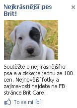 Brit - Facebook reklama